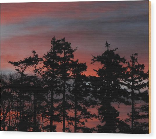 Pastel Silhouettes Wood Print