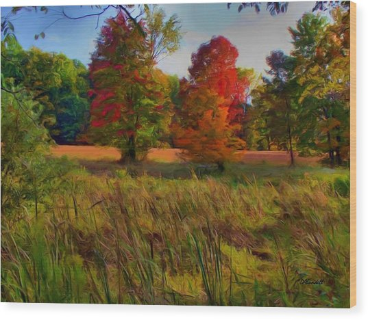 Pasture Gone Fallow Wood Print