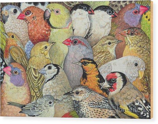 Patchwork Birds Wood Print