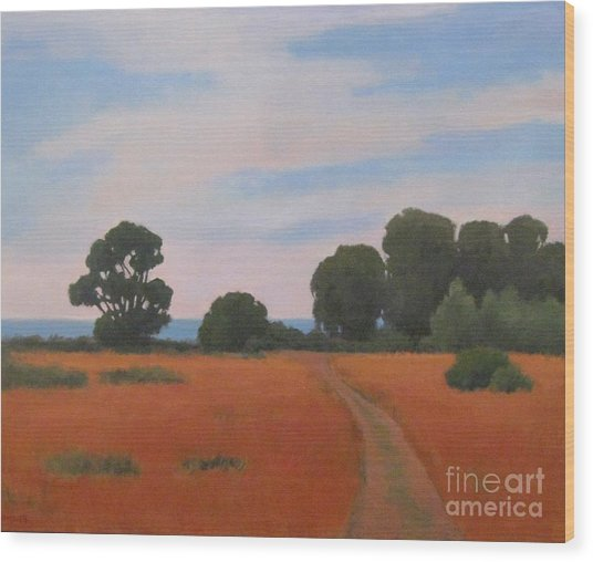 Path At Carpinteria Bluffs Wood Print