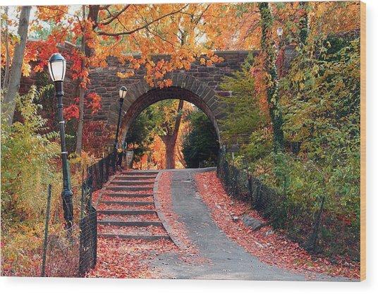 Path Of Leaves Wood Print