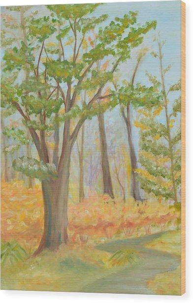 Path Of Trees Wood Print