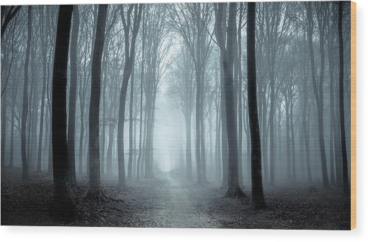 Path Through A Misty Forest During A Foggy Winter Day Wood Print by Sjo
