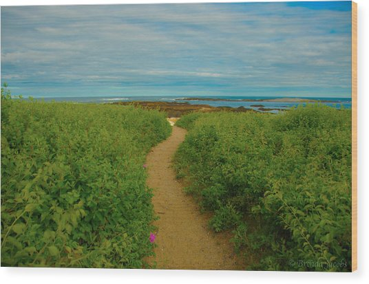 Path To Blue Wood Print