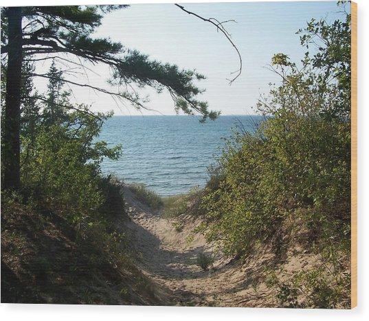 Path To Lake Michigan Wood Print