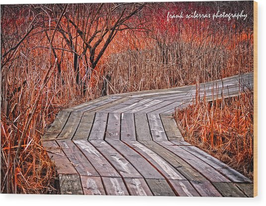 Path To Nature Wood Print by Frank Sciberras