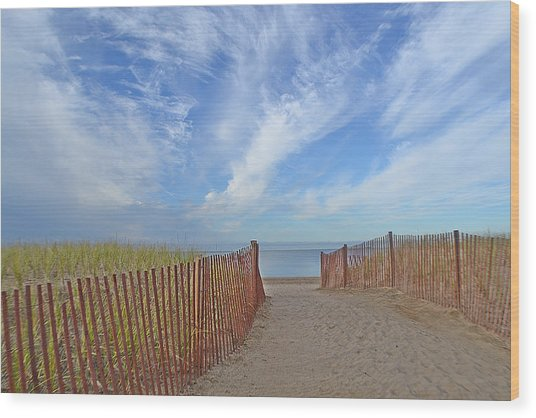 Path To The Beach Wood Print by Marjorie Tietjen