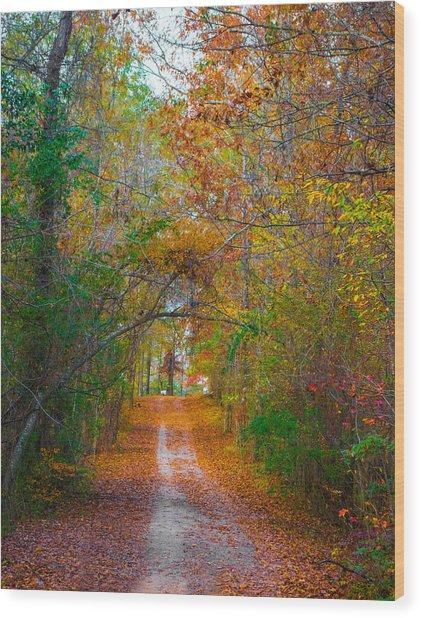 Path To The Fairies Wood Print