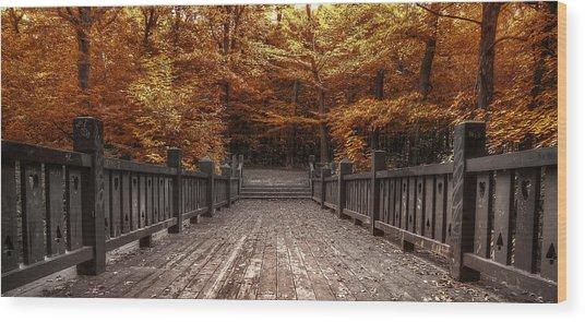 Path To The Wild Wood Wood Print