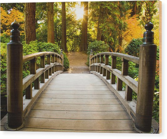 Path To Wisdom Wood Print