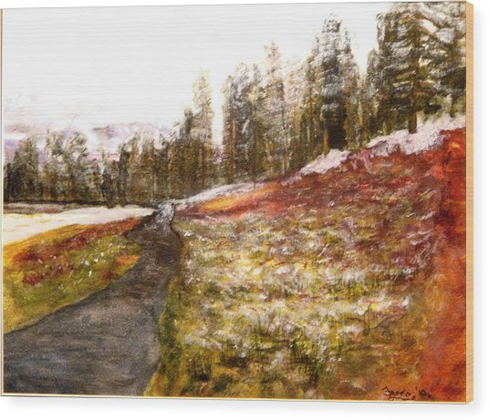 Pathway In The Tetons Wood Print