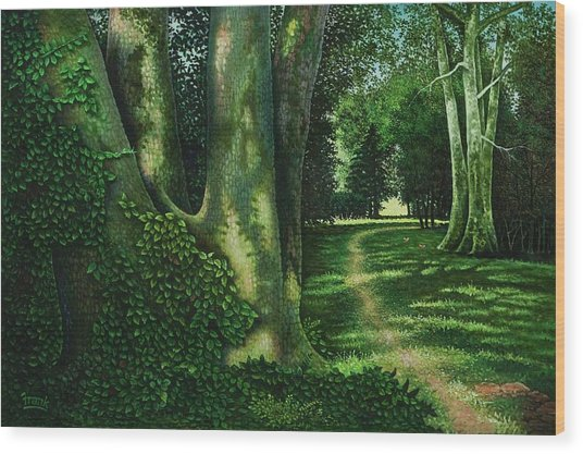 Pathway Through The Sycamores Wood Print