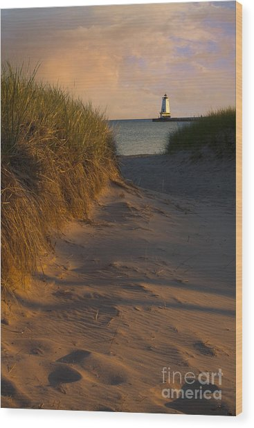 Pathway To Lighthouse Wood Print