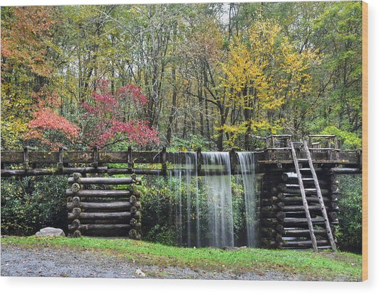 Pathway To The Mill Wood Print by Mary Anne Baker