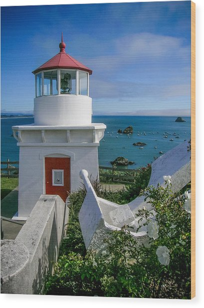 Patrick's Point Lighthouse Wood Print by Jim DeLillo