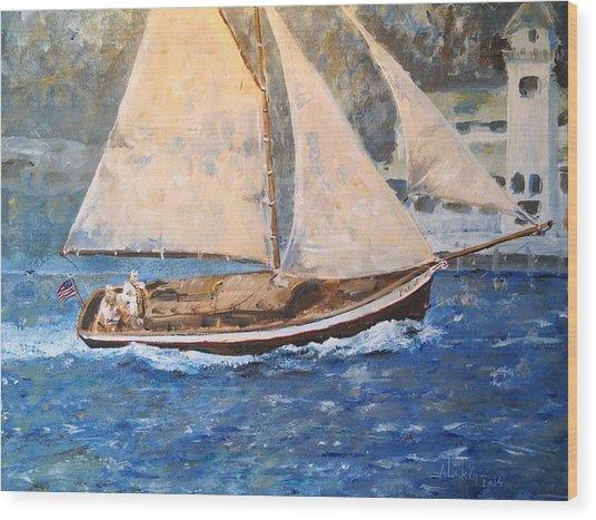 Patriot At Catalina Lighthouse Wood Print