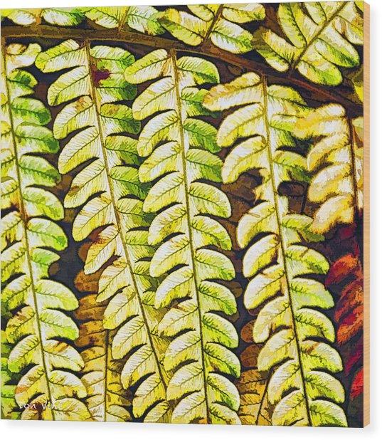 Patterns In Cinnamon Fern Wood Print