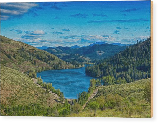 Patterson Lake In The Summer Wood Print