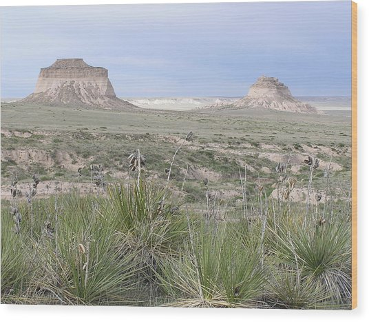 Pawnee Buttes Wood Print