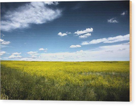 Pawnee Grasslands Wood Print