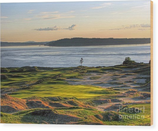 Pax - Chambers Bay Golf Course Wood Print