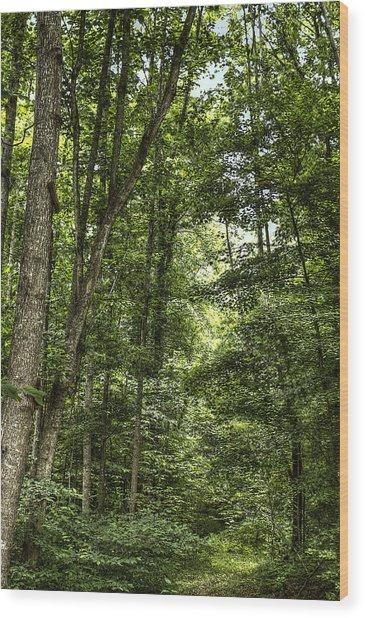Honour Peace Serenity  Wood Print by Honour Hall