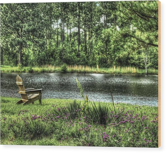 Peace At The Pond Wood Print by EG Kight