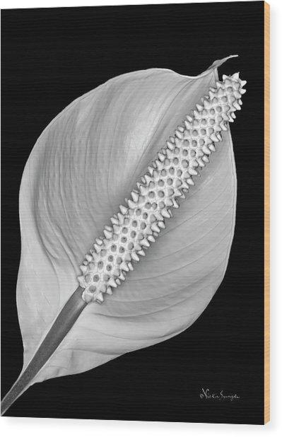 Peace Lily Wood Print