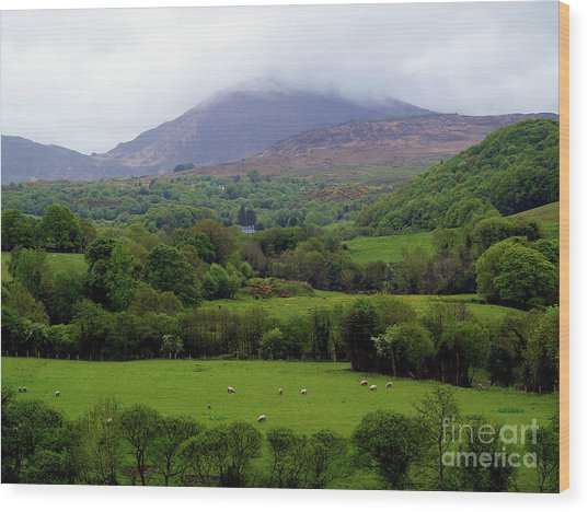 Peace On The Emerald Isle Wood Print