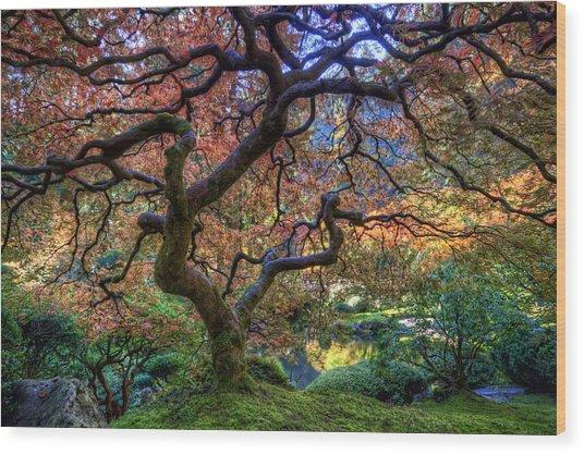 Peaceful Autumn Morning Wood Print