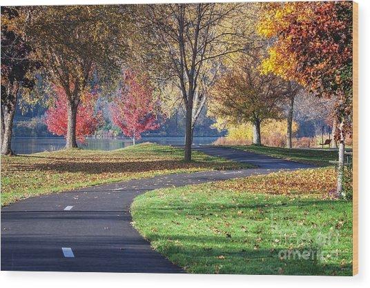 Peaceful Autumn Path II Wood Print