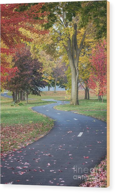 Peaceful Autumn Path Winona Photo Wood Print by Kari Yearous