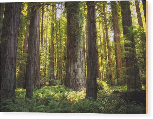 Peaceful  Wood Print