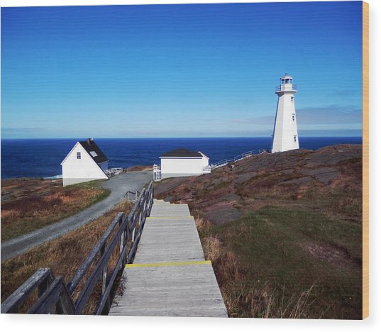 Peaceful Day At Cape Spear Wood Print