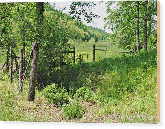 Peaceful Field Wood Print by Stephanie Grooms