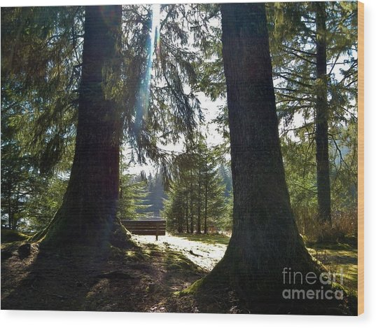 Wood Print featuring the photograph Peaceful Setting  by Laura  Wong-Rose
