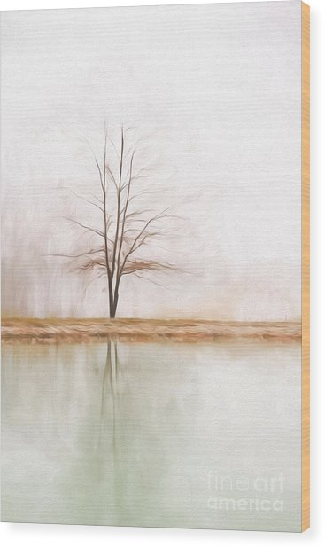 Peacefulness Wood Print