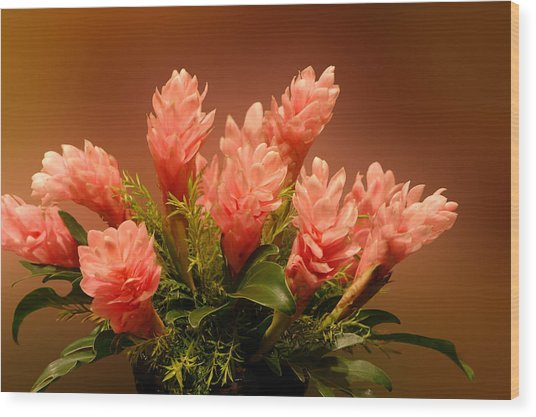 Peach Gibger Blossoms Wood Print