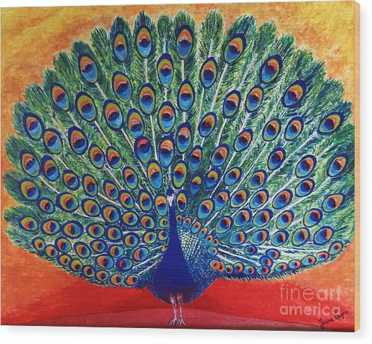 Peacock By Jasna Gopic Wood Print