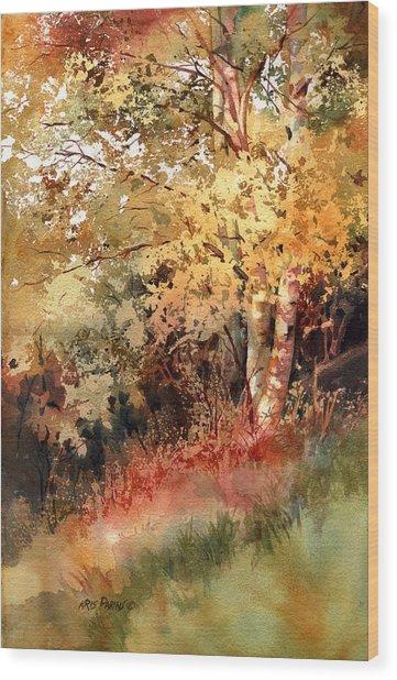 Peak Color Wood Print