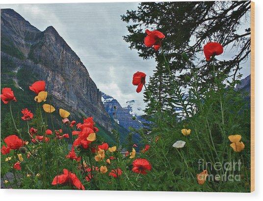 Peaks And Poppies Wood Print