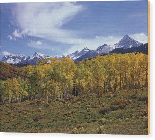 Peaks - In - View Wood Print