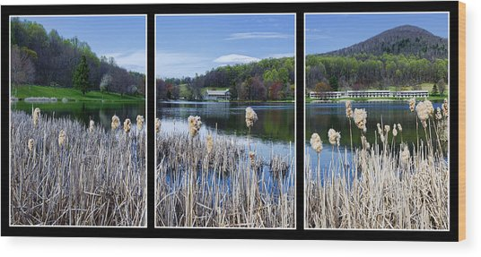 Peaks Of Otter Lodge Triptych Wood Print