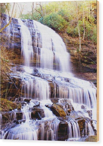 Pearson Falls Wood Print