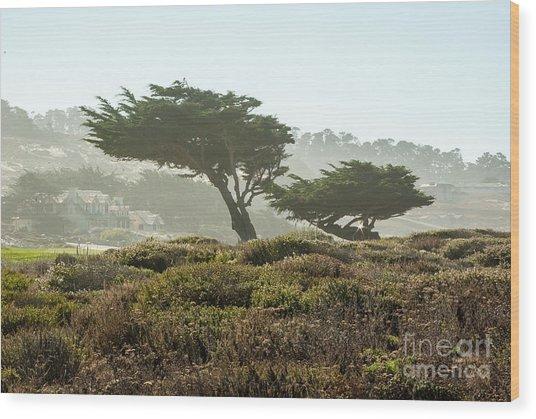 Pebble Beach 1.6943 Wood Print by Stephen Parker