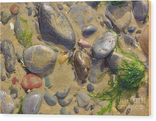 Pebbles On The Beach Wood Print
