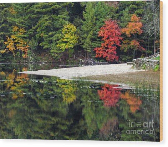 Peck Pond Autumn Reflections Ix Wood Print