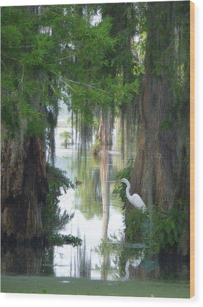 Peeking Thru Natures Swamp Window Wood Print