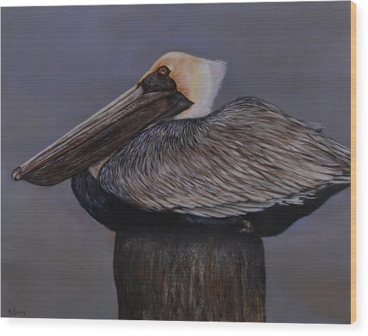 Pelican At The Pier Wood Print