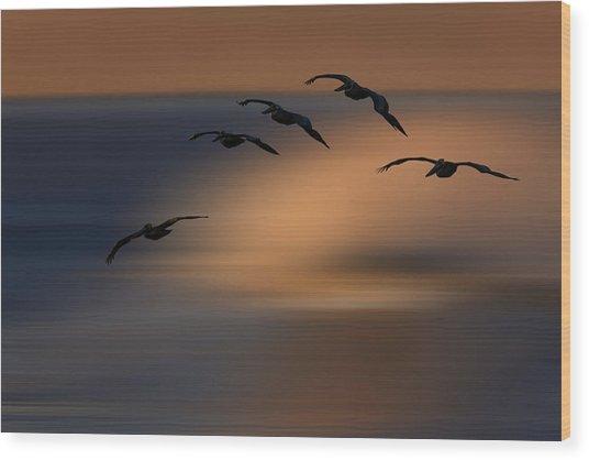 Pelican Blur  73a2324 Wood Print